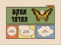 Butterflyeffecthebrew