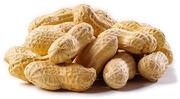 Peanuts1-1-