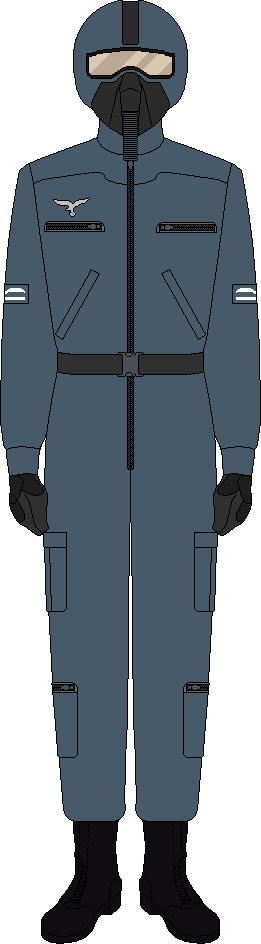 Luftwaffe combat flight suit by thefalconette-d599q0i
