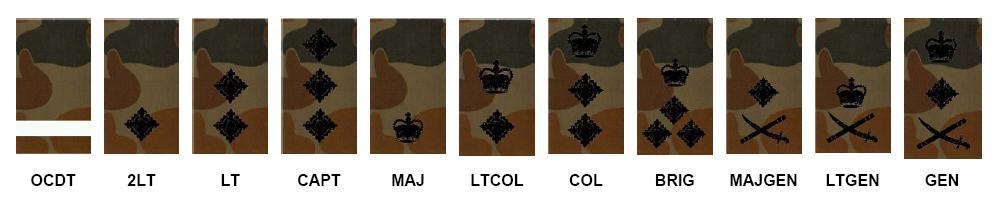 ArmyOfficerDPCU