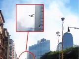 Steven Moran's Winged Humanoid Sighting
