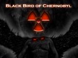 The Blackbird of Chernobyl