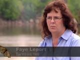 Faye Dewitt-Leport's Mothman Sighting