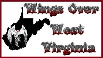 MothMan Sightings and Opinions - Wings Over West Virginia