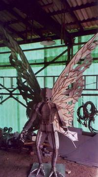 Moth966