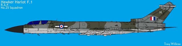 File:RAF1.png