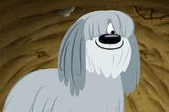 Niblet-Screencap-pound-puppies-2010-29102231-600-400