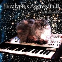 Eucalyptus Aggregata II