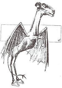 Betere Jersey Devil | The Necronomicon Wiki | Fandom BE-85