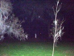 Haunted-myrtes-plantation
