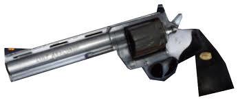 HL2 Magnum Weapon