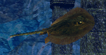 File:Stingray.png