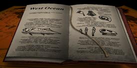West Ocean journal entry