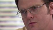 Dwight palm