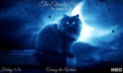 Eternity13