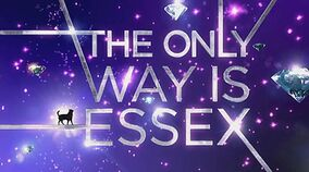 TOWIEssex-Wikia Banner 001