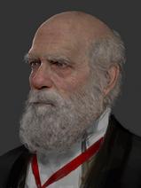 Tobiaskwandarwin