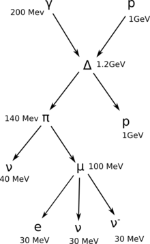 Proton delta neutrino