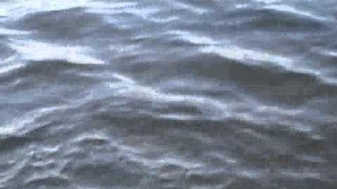 Wellen - Druck und Speed
