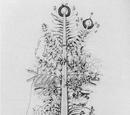 Urpflanze
