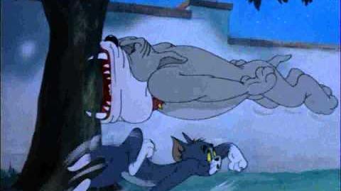 "Tom & Jerry ""Solid Serenade"" (HD & HQ)"