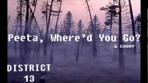 Peeta, Where'd You Go? (Jar of Hearts cover)