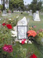 Harold Pruett-grave