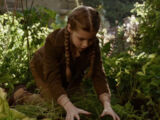 Fiona Frauenfeld (film)