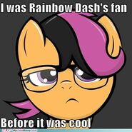 Scootaloo Is Cool