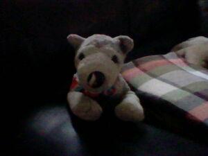 Di'angelo Sitting on the Sofa