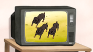 S6E20.002 Three Angry Dogs