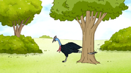 S6E24.102 Cassowary Slicing the Tree