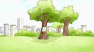 S2E11.118 Paper Blown into a Tree