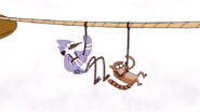 S5E12.336 Mordecai and Rigby Zip Lining