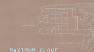S6E24.001 Maximum Glove