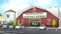 S6E11.069 Lots of Groceries Grocery Store