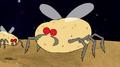 S8E09.081 Potato Bug.png