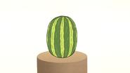 S4E12.181 Standing Watermelon