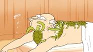 S6E15.215 Turtle Smacking Time