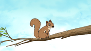 S5E29.002 A Squirrel