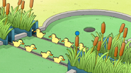 S6E03.156 The Baby Duck Hole