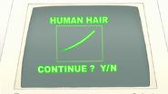 S7E29.117 Human Hair