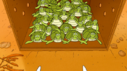 S6E15.189 Baby Sea Turtles Staring at Eileen