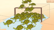 S6E15.217 The Turtles are Free