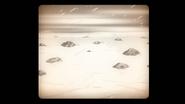 S8E20.189 Fallen Meteorites