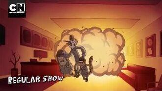 Oh, Starla Regular Show Cartoon Network