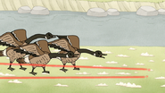 S4E19.41 Lasers Fooling the Geese 01