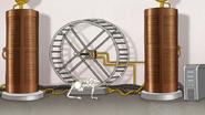 S7E25.148 Giant Hamster Wheel Generator