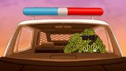 S6E15.233 It's Turtle Time