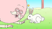 S8E07.003 Don't you agree, Mr. Rabbit